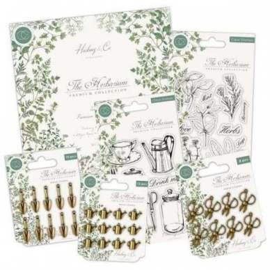 The Herbarium Collection